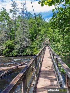 Hike the Benton MacKaye Trail near Blue Ridge to a swinging suspension bridge over the Toccoa River