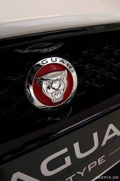 ..to come :)  #jaguar
