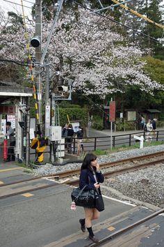 Beat of Pink: Photo Aesthetic Japan, City Aesthetic, Japanese Aesthetic, Aesthetic Photo, Japanese School Uniform Girl, Japon Tokyo, Japan Street, Dark City, Train