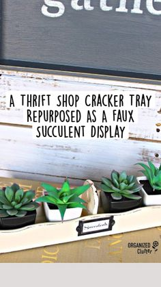 Thrift Store Decorating, Thrift Store Crafts, Thrift Store Finds, Decorating On A Budget, Succulent Display, Succulent Arrangements, Succulent Pots, Diy Upcycled Decor, Upcycled Furniture