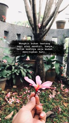 ideas for quotes indonesia sendiri Quotes Rindu, Tumblr Quotes, Text Quotes, Photo Quotes, Lyric Quotes, Daily Quotes, Snap Quotes, Random Quotes, Qoutes