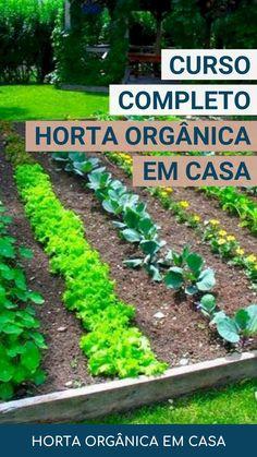 Eco Garden, Garden Steps, Gnome Garden, Home And Garden, Grow Home, Farm Gardens, Green Life, Aquaponics, Growing Plants