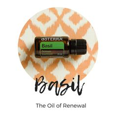Basil - The Oil of Renewal Basil Essential Oil, Pure Essential Oils, Oil Benefits, Doterra, Pure Products, Collection, Doterra Essential Oils