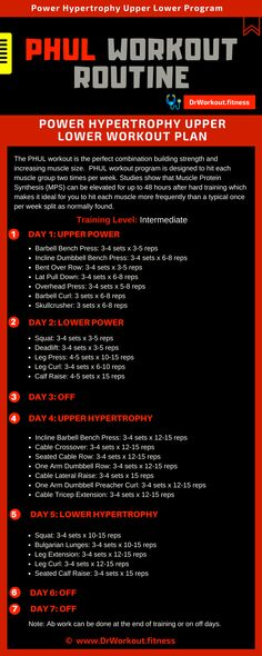 PHUL Workout Routine & Power Hypertrophy Upper Lower Workout Routine PHUL Workout Routine & Power Hypertrophy Upper Lower Workout Routine Source by Howlifegoes The post PHUL Workout Routine Push Pull Workout Routine, 4 Day Workout, Workout Plan For Men, Weekly Workout Plans, Gym Routine, Gym Workout Tips, Workout Fitness, Calisthenics Workout Routine, Gym Workouts For Men