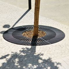 Find out all of the information about the AREA product: steel tree grate BOSTON. Contact a supplier or the parent company directly to get a quote or to find out a price or your closest point of sale. Urban Furniture, Street Furniture, Curved Outdoor Benches, Monuments, Drainage Grates, Tree Grate, Landscaping Trees, Planting Plan, Landscape Architecture Design