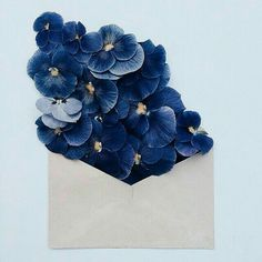 Delicate Arrangements of Vibrant Flowers Complement Naturally-Toned Vintage Paper Envelopes Ravenclaw, All The Bright Places, Bloom, No Rain, Deco Floral, Blue Aesthetic, Pansies, Graphic, Shades Of Blue
