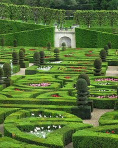 """""""A French Garden"""" - photo by Dave Mills;  The gardens at Chateau de Villandry in France are beautiful and massive. The gardens are meticulously maintained with different plantings throughout the year."""
