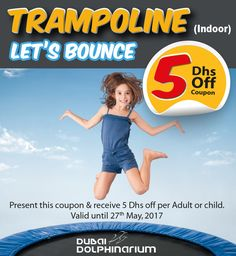 Get the jump and bounce of your life with our trampoline! Avail this 5 AED off coupon valid until of May. For inquiries: Visit www. Dubai Dolphinarium, Bottlenose Dolphin, Most Beautiful Animals, Pool Days, Exotic Birds, Dolphins, Things That Bounce, The Good Place, Coupon