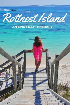 Rottnest Island 1-day Itinerary