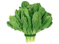 Healthy & Fresh Chemical Free Pure Organic Spinach With High Nutrition & Low Calories. Leafy Is Healthy So Buy Certified Organic Spinach Online, Delivered To Your Door. Vitamin A, Spinach Benefits, Vegetable Pictures, Vegetables Photography, Vegetable Illustration, Fruit Logo, Sources Of Dietary Fiber, Food Banner, Organic Garlic