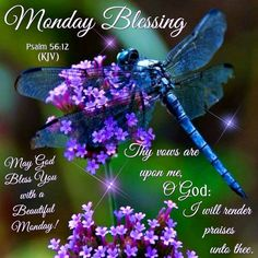 Monday Blessing, Psalm 56:12