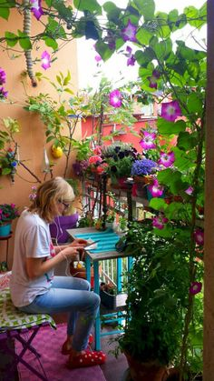 Plants on balcony, apartment balcony garden, small balcony decor, patio balcony Small Balcony Garden, Small Balcony Decor, Terrace Garden, Small Patio, Balcony Ideas, Balcony Plants, Balcony Flowers, Balcony Gardening, Patio Ideas
