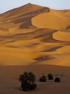 Sahara Desert Erg Chebbi Morocco Africa Sand Dunes Hot Heat Camels Trek Merzouga North