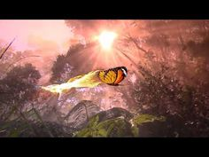 """Peaceful Music, Relaxing Music, Instrumentatl Music """"The Magical Butterfly"""" by Tim Janis. My instrumental music can help you find deep relaxation, relieve an. Deep Relaxation, Relaxing Music, Music Videos, Butterfly, Peace, Therapy, Animals, Youtube, Music"""