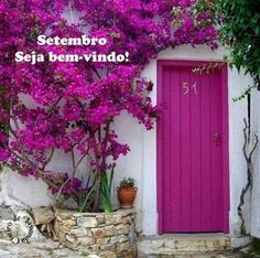 Magenta Door with bougainvillea – modern landscape design front yard