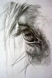Resultado de imagen para galloping horse rough sketches