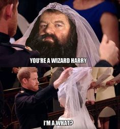 Ideas For Funny Pictures Hilarious Harry Potter Twilight Harry Potter, Harry Potter Jokes, Harry Potter Pictures, Harry Potter Cast, Harry Potter Fandom, Harry Potter Characters, Harry Potter World, Funny Harry Potter Pics, Wedding Day Meme