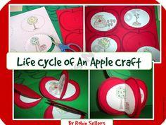 Apple Craft: {Life Cycle of an Apple Craftivity} product from Sweet-Tea-Classroom on TeachersNotebook.com