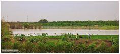 Al Gaili, North of Khartoum الجيلي، شمال الخرطوم (By Gonzalo) #sudan #gaili #nile