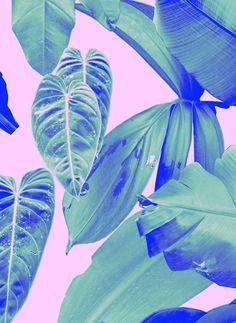 Profile   Rhianna Ellington   Pattern People   Print Studio