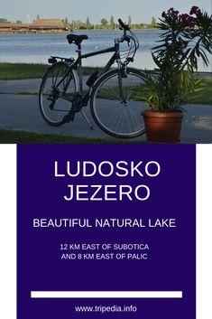#LUDOSKO #JEZERO Beautiful #Natural #Lake Belgrade Zoo, Belgrade Fortress, Assumption Church, Visit Rio, Village Photos, Novi Sad, City Museum, Europe Travel Guide, Hiking Tips