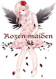 it says rozen maiden... but who is this D:?