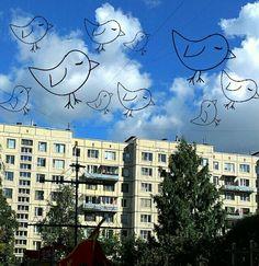 Birds in us