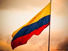 Flag of Colombia by Sebastián Valencia, via Colombian People, Colombian Art, Sheet Music Decor, Colombia Map, Spanish Flags, Flag Art, Muse Art, Painting Lessons, Valencia