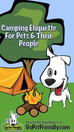 How do you camp with your pet so you're always welcome back? Get some tips from the pet travel experts at GoPetFriendly.com. Rv Camping Tips, Pet Travel, Travel Tips, Group Of Dogs, Dog Insurance, Dog Facts, Find Pets, Training Your Dog, Happy Campers