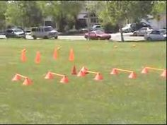 Agility Cones: Agility Cone Hurdle Cones for Soccer Training Soccer Training Drills, Soccer Drills, Soccer Tips, Agility Workouts, Soccer Season, Youth Soccer, Training Motivation, Hurdles, Training Equipment