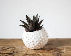 Original ceramic cactus shaped vase/ handmade door OlisCupboard