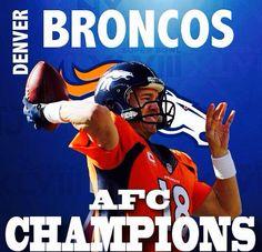 Denver Broncos 2014 AFC Champions