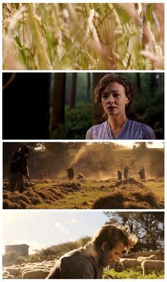 Far from the Madding Crowd Beautiful movie! Movie Theater, Movie Tv, Theatre, Period Movies, Period Dramas, Gabriel, Thomas Vinterberg, Thomas Harding, Jude The Obscure