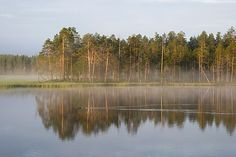 A lake in Hossa, Kainuu. Perfect place for boating and trekking.