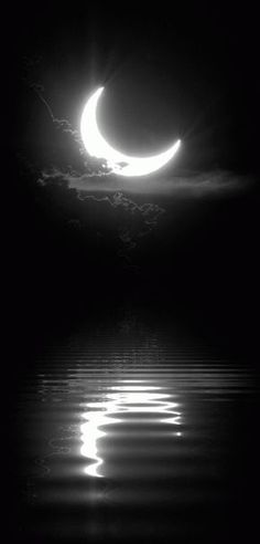 gif Black and White sky moon night edit water dark peaceful nature reflection bw darkness good night magical half moon Stars Night, Moon Dance, Luna Moon, Shoot The Moon, Sun Moon Stars, Sky Moon, Dark Moon, Moon Pictures, Moon Pics
