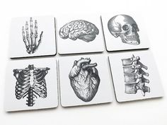 Anatomy COASTERS graduation hostess gift skull goth by artaltered