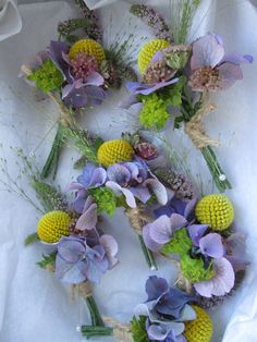 Craspedia,astrantia and hydrangea, made up these lovely textural #buttonholes, for the gents' at today's wedding at #swancarfarm