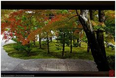 Ninna-ji temple garden, Kyoto | More pictures of Kyoto (京都).… | Flickr