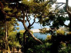Monte Carlo, Monaco.  Photo Cred: Jessica Kingman, Communication Studies