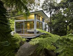 Glass Tree House Designed by Utz-Sanby Architects, nestled on a steep slope in Sidney, Australia among green surroundings