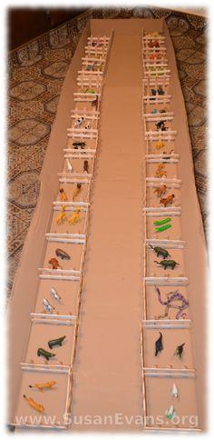 distribución animales en el arca de Noé