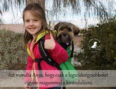 I Love Dogs, Animals And Pets, Funny Jokes, Humor, Van, Random, Pets, Husky Jokes, Humour