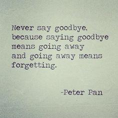 Never say goodbye never forget #longdistancerelationship