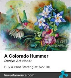 A Colorado Hummer, with columbine and sweet peas.  A watercolor by Donlyn Arbuthnot, an Member's Choice Award by the Louisville Art Association.  Prints and cards can be purchased at Fine Art America.