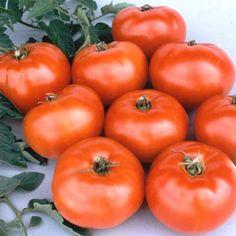Low Acid Tomatoes