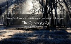 #123 The Quran 93:03 (Surah ad-Dhuha)