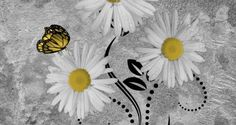 Yellow Daisy Flowers Butterflies Home Decor Wall Art Matted Picture  Status: Available!  ...