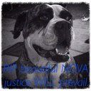 This is heinous. My friend's beautiful dog Nova was  beaten to death with a shovel - her throat slit, tail cut off and corpse dumped in the tip.  Police attended the scene but let the killer walk away. With no punishment for this heinous crime - this man is left free to kill again.   Nova's killer posted...