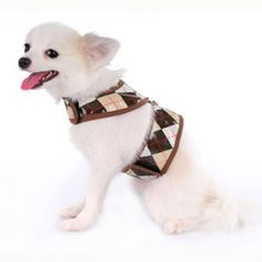 Andy Dog Harness Top