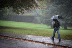 The humble umbrella: History in pics